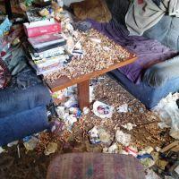 Zigarettenstummel-ueberall